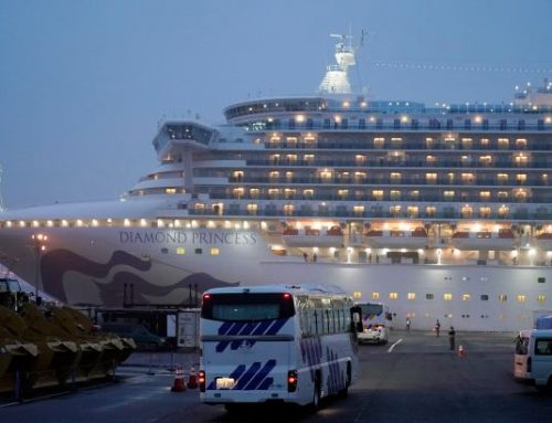 Two Diamond Princess passengers die as Britain announces repatriation flight