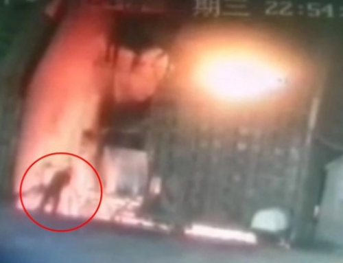Chinese man jumps into furnace and burns alive after losing £6k on stock market